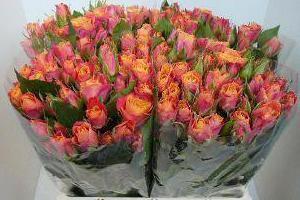 kwiaty cięte 03